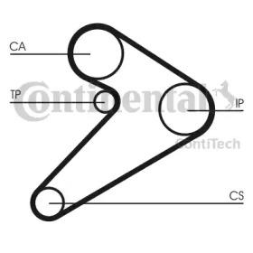 CT517 CONTITECH  -16