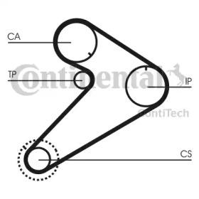 CT921 CONTITECH  -16