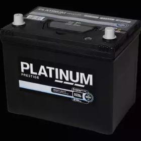 031E PLATINUM