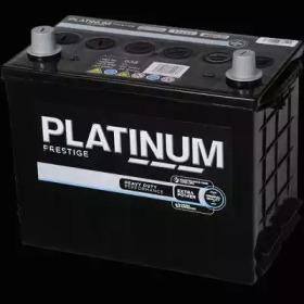 038E PLATINUM