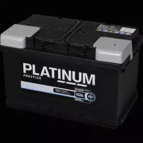 095E PLATINUM