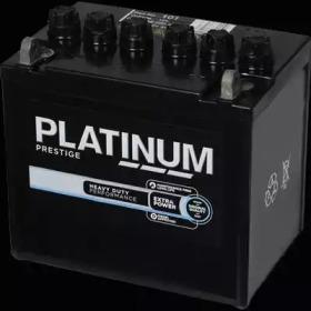 101E PLATINUM