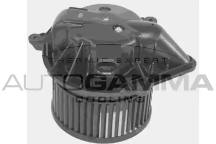 GA35010 AUTOGAMMA