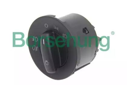 B11402 Borsehung
