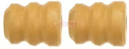 GP109 GABRIEL